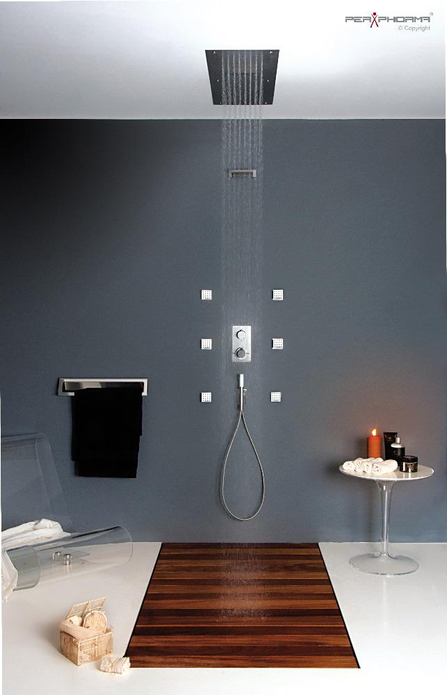 Perphorma s r l rubinetteria e sistemi doccia interamente in acciaio inox - Soffione doccia soffitto ...